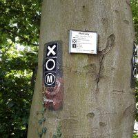 Markierung des Plackweges und andere Wanderzeichen im Arnsberger Wald.