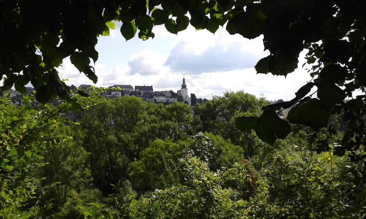 Blick zurück nach Arnsberg.